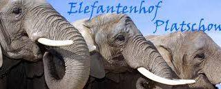 Elefantenhof Platschow - Partner Hotel Stadt Hamburg in Grabow
